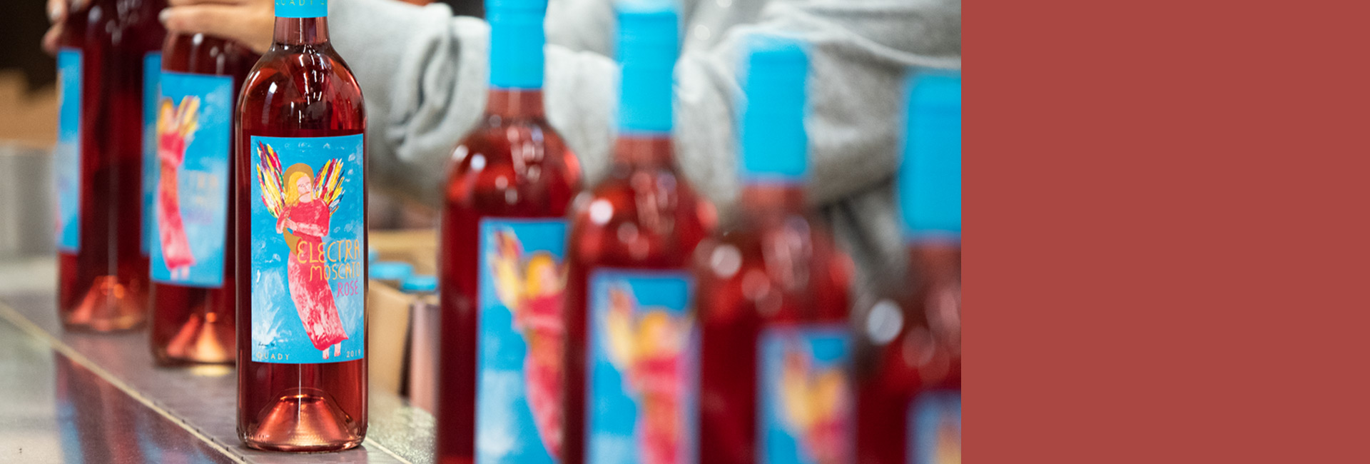 Website header showing picture of 2019 vintage Electra Moscato Rose on the bottling line being packed into wine case boxes.